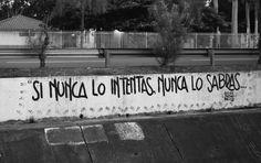 #accion #calle