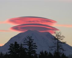 Pink and purple Frisbee type cloud plates circle the large snowy mountain top plateau at sunset. - DdO:) - https://www.pinterest.com/DianaDeeOsborne/sky-lights/ - SKY LIGHTS. Tree line of firs in the foreground gives good distance perspective for photography composition. Pinned via Electra V's NATURE board.