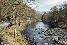 Postcard The River Derwent - BORROWDALE - Cumberland.  1961