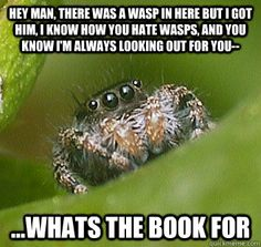 I guess if spiders could talk, I'd be less afraid of them...hey man there was a wasp in here but i got him i know how  - Misunderstood Spider