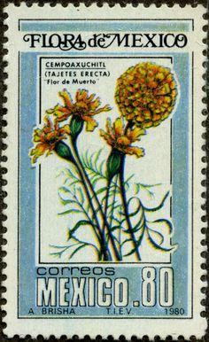 Tejetes erecta MÉXICO 3/1980