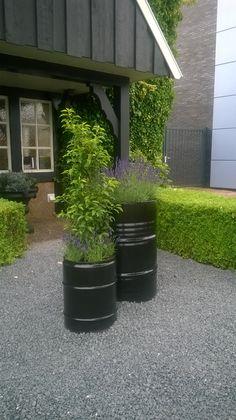 Beplanting in stoere olievaten bij Kaja Interieurs | Rijssen. Met dank aan EUROL Nijverdal die de drums (ongelakt) afstonden voor dit initiatief.