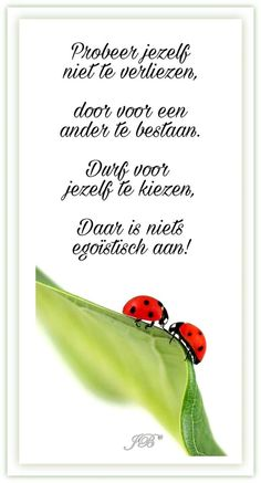 Zeker doen Poem Quotes, Words Quotes, Wise Words, Life Quotes, Sayings, Meaningful Quotes, Inspirational Quotes, Favorite Quotes, Best Quotes