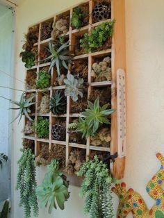 Vertical Garden project on Craftsy.com