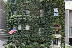 Green With Ivy in Chicago - WSJ.com