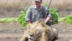 Veterinarian Says Killing Animals Is Just Something He Does For Fun. Right, like if a pediatrician could cure children on working days and moleste them on weekends.