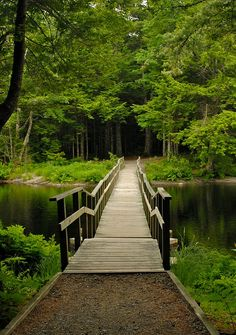 "Canada -""Keji"" — Nova Scotia's Kejimkujik Park we only got to explore a wee bit. I would love to see more. Oh The Places You'll Go, Places To Travel, Places To Visit, Camping Places, Atlantic Canada, Ontario, Belleza Natural, Canada Travel, Nova Scotia"
