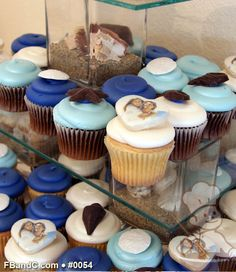 Design W 0054 | Assorted Cupcakes with Chocolate Seashells & Photo Cookie Toppers | Custom Quote