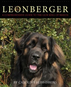 The Leonberger: A Comprehensive Guide to the Lion King of Breeds ** NEW BOOK **