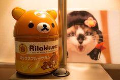 """"""" Rilakkuma&SEN """"  07.Sep.2013  久しぶりに会った友人のお土産〜Thanks!。HOTELでふにゃふにゃ〜♪ EOS M での初投稿でふ。やっぱり画像はアマアマでふふふ。手にして気づいた〜縦横比は2:3なんだな。ははは"""
