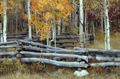 How To Install A Split Rail Fence