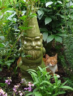 the garden gnome and the cat