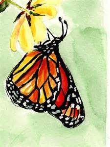 monarch butterfly watercolors