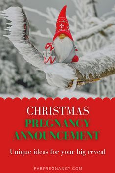 Christmas, the time for cheer and love how about taking the crhistmas spirit a level higher with your Christmas pregnancy announcement. Find out more on Christmas pregnancy announcement, Christmas pregnancy announcement first, Christmas pregnancy announcement to family, Holidays, Christmas and more on motherhood. #Christmaspregnancyannouncement, #Christmaspregnancyannouncementfirst, #Christmaspregnancyannouncementtofamily #holidays #christmas #motherhood, #fabpregnancy Holiday Pregnancy Announcement, Holiday Stress, Christmas Holidays, Christmas Ornaments, Cheer, Spirit, Holiday Decor, Gifts, Christmas Vacation