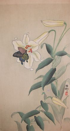 Butterfly on Large Light Yellow Lilly by Koson, Japan