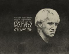 You can stand there and deny me all you want, but I am still your son. I am still a Malfoy and the only Malfoy heir.