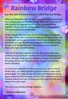 Rainbow Bridge poem for pet loss - so poignant and perfect