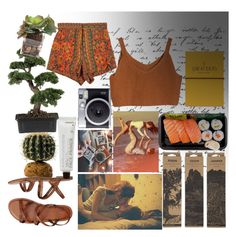 """Nature's Beauty"" by ghostlycatgirl ❤ liked on Polyvore featuring Komodo, Gap, Korres, Jayson Home, Ladies & Gentlemen, Topshop, Nearly Natural and John-Richard"
