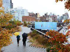 This gorgeous shot shows Thomas Demand's High Line Art Billboard, High Line, bordered by brilliant fall foliage at the Avenue Square. Photo by Timothy Schenck Fall Photos, Photos Of The Week, Thomas Demand, Highline Park, New York Central Railroad, Happy City, Linear Park, Thing 1, High Line