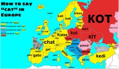 """maps-oe: """" How to say """"cat"""" in various European languages with etymology *Note*-I fixed the Finnish and Hungarian words to their correct vocabulary """" More word maps >> Europe Facts, European Day Of Languages, Word Map, Old Cats, More Words, Historical Maps, Map Art, Vocabulary, Fun Facts"""