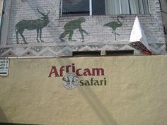 November 2011  Puebla  Africam Safari