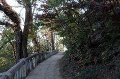 모란봉의 가을풍경(1)-《조선의 오늘》