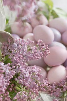 White Ironstone Cottage's Lilac Eggs!! So, soft & pretty!
