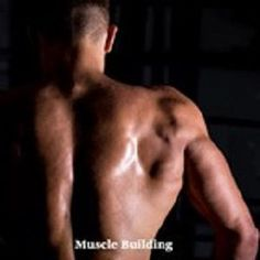 When it comes to gaining #lean_muscle, what you eat matters. This article takes a look at the top muscle-building foods. Best Muscle Building Foods, Muscle Building Meal Plan, Muscle Building Women, Plyometric Workout, Plyometrics, Weight Trainer, Funny Diet Quotes, Increase Muscle Mass, Different Exercises