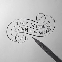 """Stay wilder than the wind"" by @novia_jonatan Love the flourishes."