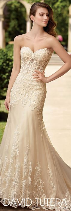 David Tutera for Mon Cheri Spring 2017 Collection - Style No. 117278 Oria - Ivory and Light Gold strapless lace wedding dress #laceweddingdresses