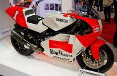 Wayne Rainey Yamaha YZR500
