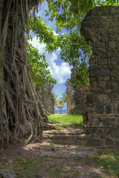 Long crumbled buildings overtaken by the jungle in Pigeon Island National Park, St Lucia