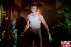 Photo of Logan for fans of Hugh Jackman as Wolverine 19325366 Hugh Michael Jackman, Hugh Jackman, Marvel Dc Comics, Marvel Heroes, Xmen Cosplay, Batman Cosplay, Logan Wolverine, Man Character, Batman Vs Superman