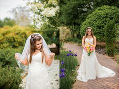 Loved this pose from a recent bridal session! Bridal Session, Charlotte Nc, Destination Wedding Photographer, Botanical Gardens, Veil, Wedding Photography, Poses, Bride, Wedding Dresses