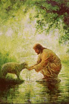Jesus Artwork, Jesus Christ Painting, Paintings Of Christ, Christian Paintings, Christian Artwork, Catholic Art, Religious Art, Arte Lds, Pictures Of Jesus Christ