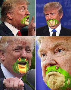 11 Funny Pics of Donald Trump's Frog Chin