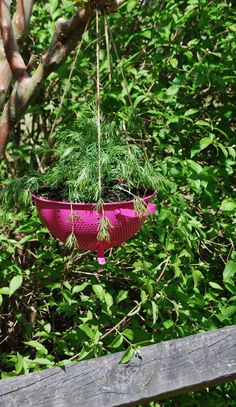 Neat ways to repurpose items for the garden - Gardening with Goodwill