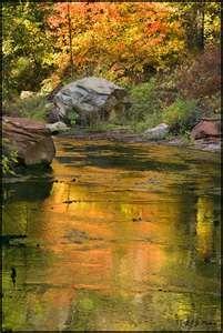 Oak Creek Canyon (just before entering Sedona)