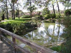 Hermann Park #Houston #Texas