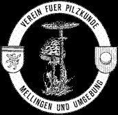 Willkommen beim Pilzverein Mellingen Templates, Mushrooms, Switzerland, Stencils, Vorlage, Models