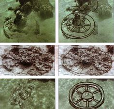 Egyptian chariot axles and chariot wheels found in the Red Sea. These coral covered remnants date back to the time of Ramses (aka... the time of Moses).  This can be concluded by the number of spokes in the chariot wheels.  Looking at the construction of the wheels, these are from Egyptian war chariots. They are strong and robust in order to carry several men with their weaponry.