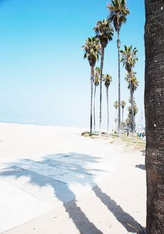 Venice Beach Diary | Sincerely Jules | Bloglovin'