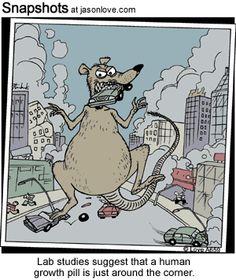 #rat #lab #human #growth #study #studies #science #Godzilla #destruction #city #mice
