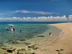 Boat anchoring on the beach of Toolgbar Island near Mission Beach in tropical North Queensland Mission Beach, Tropical Paradise, Islands, Tourism, Beautiful Places, Boat, Australia, Spaces, Weddings