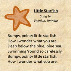 """""""Little Starfish"""" sung to the tune of Twinkle Twinkle Little Star."""