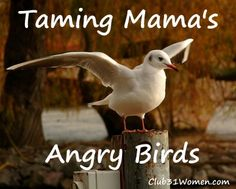 Ruffled feathers? How the Lord will help soothe mama's soul.