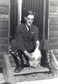 """Acting F/L Robert A """"Butch"""" Barton of No 249 Squadron RAF relaxes with Wilfred, after they were transferred from RAF Church Fenton to RAF Boscombe Down on 14 August 1940. The relatively tame duck was considered a great character that would tag along to the pub with his canine friend Pipsqueak and off-duty masters. The bird apparently had a taste for the barroom's best bitter and, after taking his full, would deposit what was coyly referred to as his """"calling card""""."""