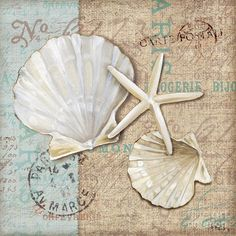 Premium Thick-Wrap Canvas entitled Linen Shells I. Decorative artwork of a pair of scallop shells and a starfish on a fabric-textured background with faded vintage text. Our proprietary canvas provides a classic and distinctive texture. Abstract Canvas, Canvas Wall Art, Watercolor Card, Etiquette Vintage, Foto Transfer, Tile Murals, Beach Crafts, Shell Crafts, Beach Art