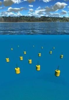 Underwater robots offer scientists an extraordinary new tool to study ocean currents and the tiny creatures they transport. Swarms of these underwater robots helped answer some basic questions about the most abundant life forms in the ocean -- plankton. Ocean Current, Types Of Work, Oceans Of The World, Robot Design, Abundant Life, Life Form, Ocean Life, Science And Nature, Underwater