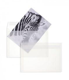 Enveloppes transparentes pour le mot des BB